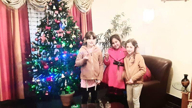 tannenbaum in shillong