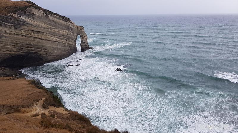Der Blick auf die Steilküste am Cape Farewell.